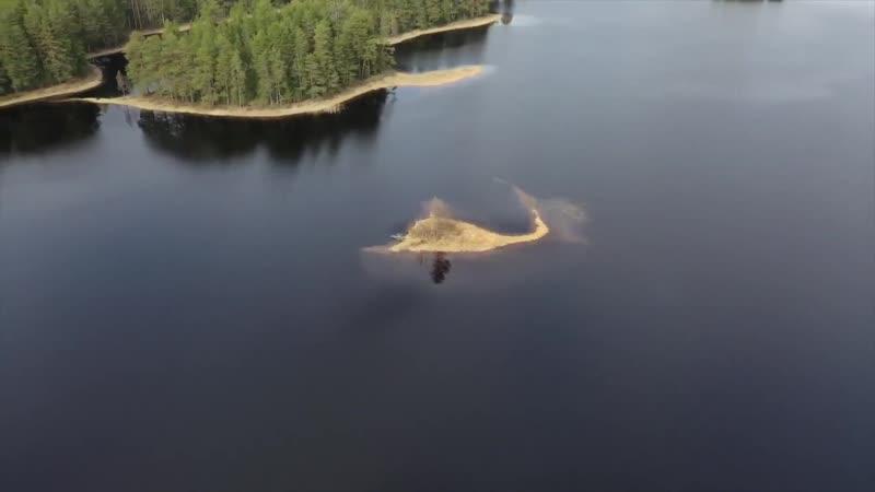 Озеро Городно, Внуто и Никандрово.Качество Full HD