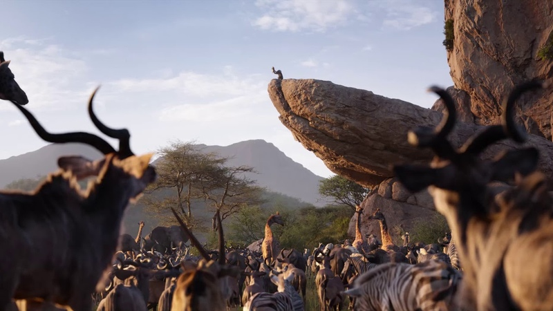 Отрывок из фильма Король Лев Да здравствует Король