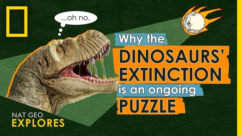 Why the Dinosaurs' Extinction is an Ongoing Puzzle Nat Geo Explores