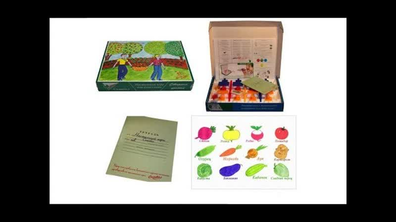 Игра для взрослых и детей Сканбол Собераем урожай от Сканбол настольная игра для всей семьи