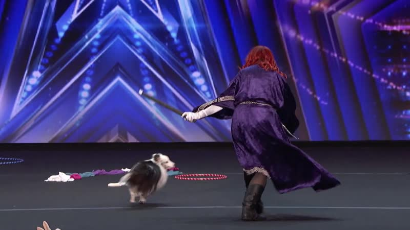 Adorable Dog Performs Incredible Tricks With Trainer Americas Got Talent 2020 n VimUCWzU 1080p