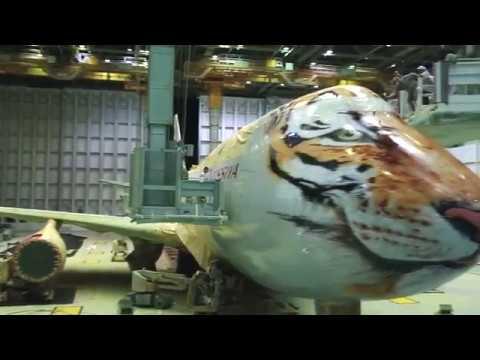 покраска боинга 747 с тигром