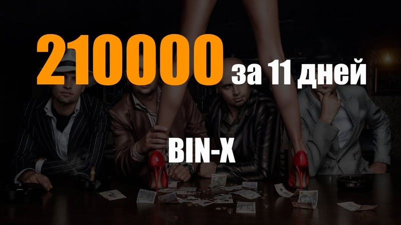 210 000 за 11 дней на партнерке bin x