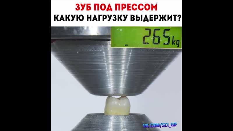 зуб под прессом