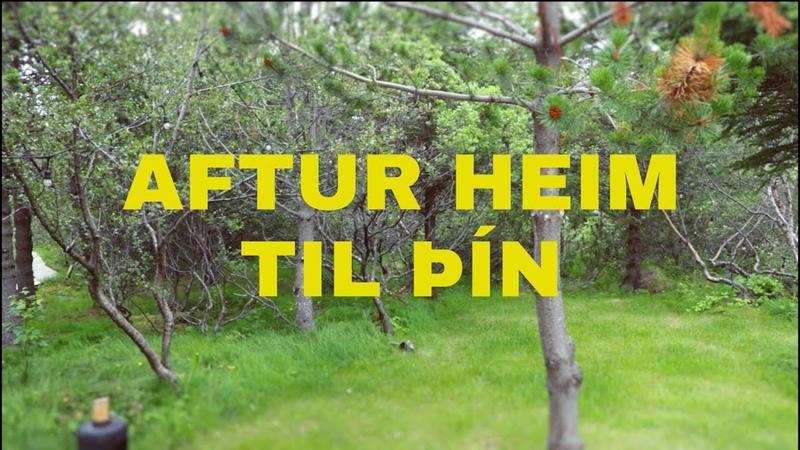 Eyþór Ingi Lay Low Aftur Heim Til Þín
