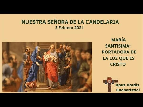 PADRE TAMAYO María Santísima, portadora de la Luz que es Cristo (Homilía Fiesta Candelaria)