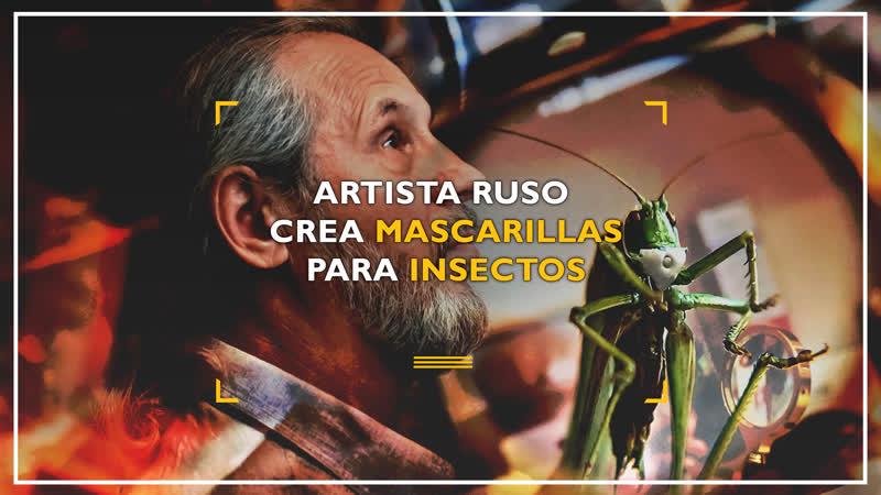 Artista ruso crea mascarillas para insectos