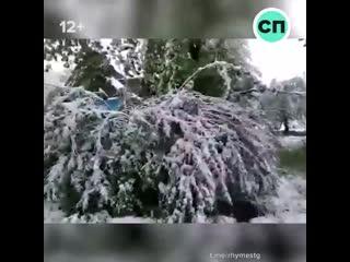 Снег на юге РФ