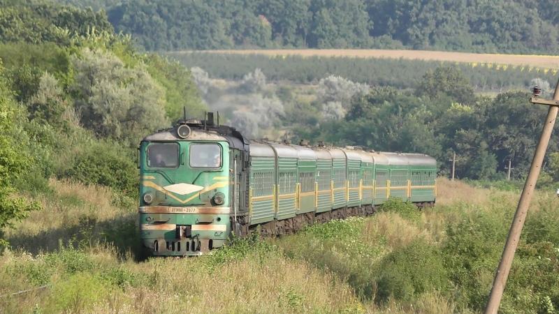 Старый зелёный тепловоз с зелёными вагонами пробирается сквозь травы