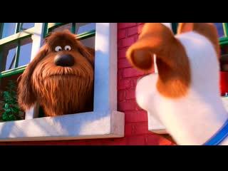 Тайная жизнь домашних животных 2 мультфильм 2019 смотреть онлайн комедия в хорошем качестве