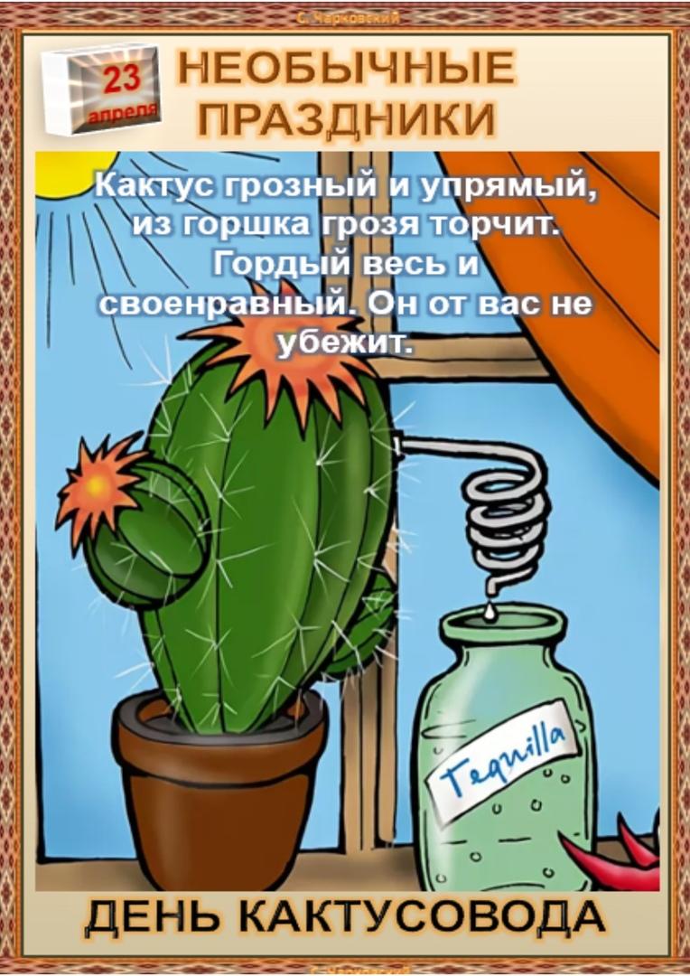 kKY2MCYlJ34.jpg