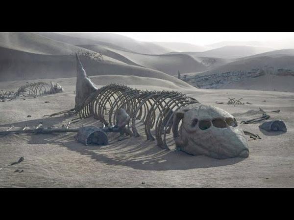 Удивлению археологов не было придела! Необъяснимые находки археологов!