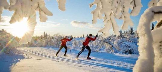 В чем польза беговых лыж?