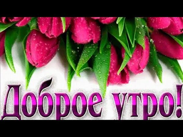 Вселяю в Вас Надежду Любовь и Веру С Добрым Весенним Утром Хорошим Днем