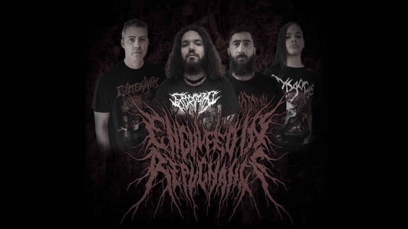 ENGULFED IN REPUGNANCE MAGGOT INFESTED PULSATING WOUNDS DEBUT SINGLE 2021 SW EXCLUSIVE