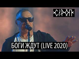 СiРОП  БОГИ ЖДУТ (LIVE 2020)