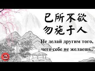 Правда жизни от Цзинцзин: Не делай другим того, чего себе не желаешь.