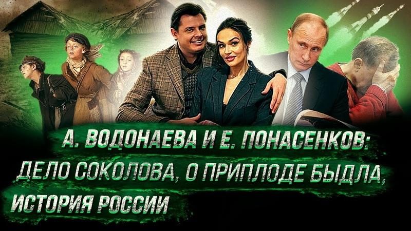 А Водонаева берет интервью у Е Понасенкова дело Соколова о приплоде быдла история России