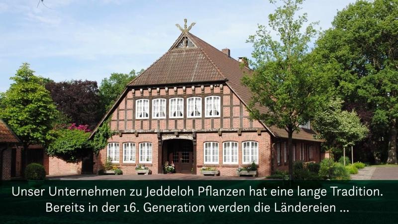 Baumschule zu Jeddeloh Pflanzen - Qualität aus eigener Produktion