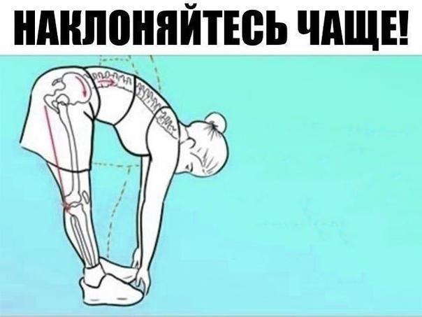 Поясничная мышца (the psoas muscle