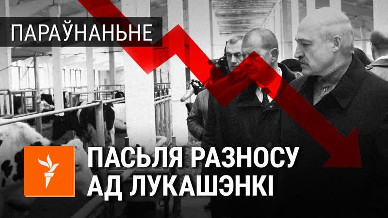 Пасьля разносу ад Лукашэнкі даўгі заводу вырасьлі