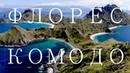 Флорес, Комодо дайвинг, вараны, вулканы и сказочная природа/ апрель 2019