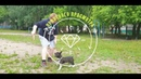 Прогулка после дождя-French Bulldog(Ксюша) и Pug (Даше)