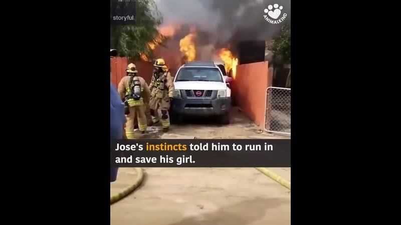 Когда Хосе увидел свой дом в огне, он не колебался перед тем, как бежать внутрь, чтобы спасти свою собаку..mp4