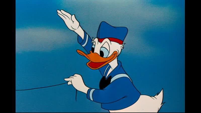 1954 11 12 DD The Flying Squirrel DVD C НЕВАФИЛЬМ ENG sub
