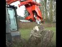 كيف يتم تقطيع جزور الاشجار الضخمه شاهد هذه