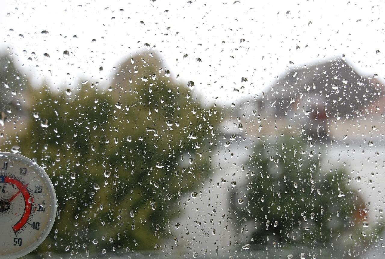 Дождливая погода не отступит от Марий Эл и на этой неделе