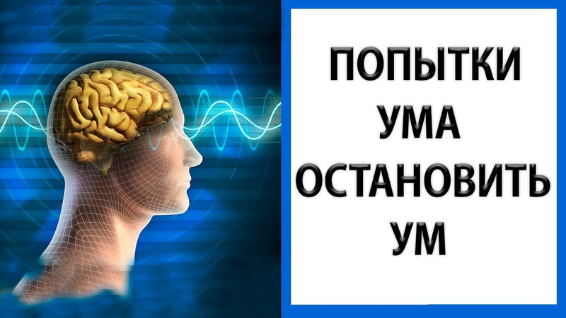 Состояние без мыслей Твое заветное желание Природа ума