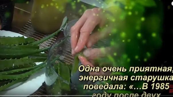 Oдна очень приятная, энергичная старушка поведала: «В 1985 году после двух операций меня выписали из Московской онкологической клиники и отправили умирать домой, отведя, как позже выяснилось, 10