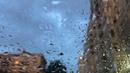 В Питере снова плохая погода · coub, коуб