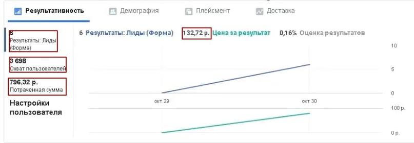 38 лидов по 49 рублей за 1 сутки в нише Бани-бочки., изображение №12