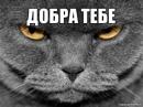 Фотоальбом Александра Аверкина
