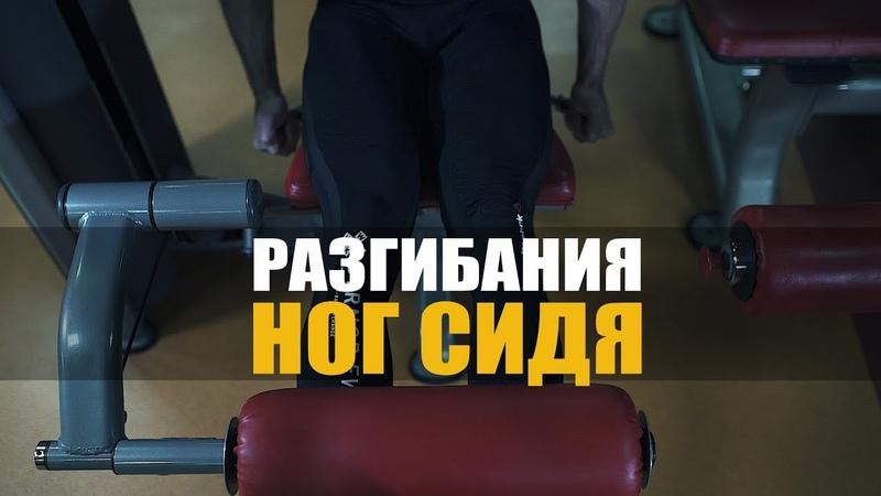 Разгибания ног сидя как накачать ноги
