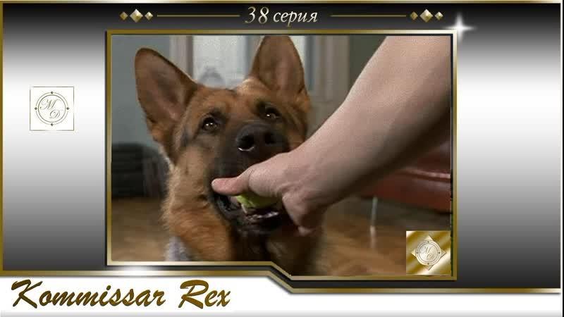 Komissar Rex 3x09 Комиссар Рекс 38 серия