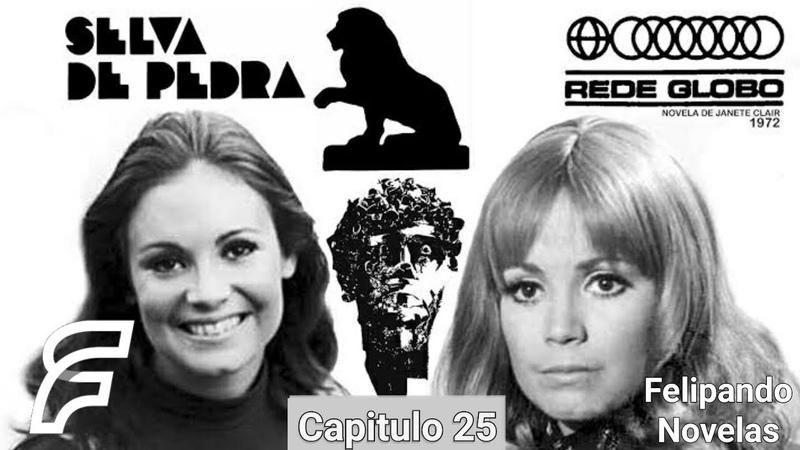 SELVA DE PEDRA - CAPITULO 25 [FELIPANDO NOVELAS] (REDE GLOBO 1972)