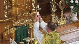 Live Stream - 11:00 am Sunday Mass (Ordinary Form - Latin) - Sunday, August 2