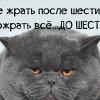 Жапаров Руслан