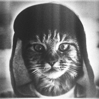 Фотография анкеты Александра Вишнёвского ВКонтакте