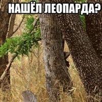 Фотография Сергия Коринчука ВКонтакте