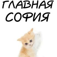 Sofi  Elyoskina