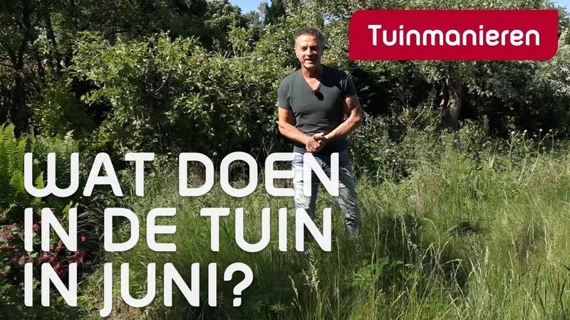 Wat doe je in juni in de tuin lente Tuinmanieren